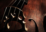 Part of musical string instrument, closeup