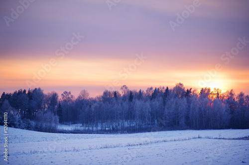 In de dag Ijsbeer Peaceful winter landscape at sunset