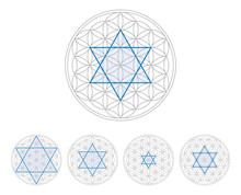 Blue Hexagram In Flower Of Lif...