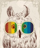 Vector sketch of owls with glasses. Retro illustration - 120491547