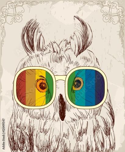 sowa-w-teczowych-okularach