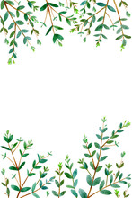 Frame With Eucalyptus Branches.green Floral Border.postcard.watercolor Hand Drawn Illustration.