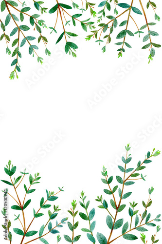 frame with eucalyptus branches.green floral border.postcard ...