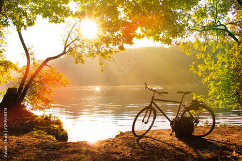 Canvas Prints Honey Autumn Breeze, Fresh Morning with the Golden Sun coming at a morning in Fall