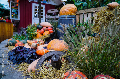 Photo  Halloween - Tivoli