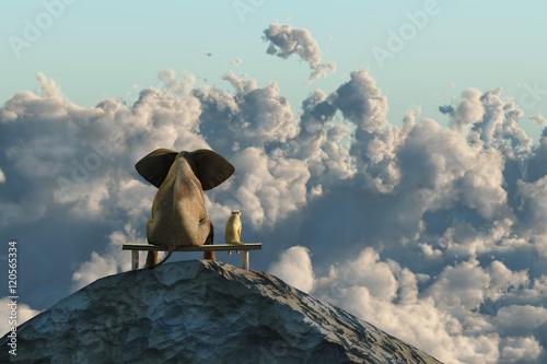 Zdjęcie XXL Słoń i pies siedzą na szczycie góry
