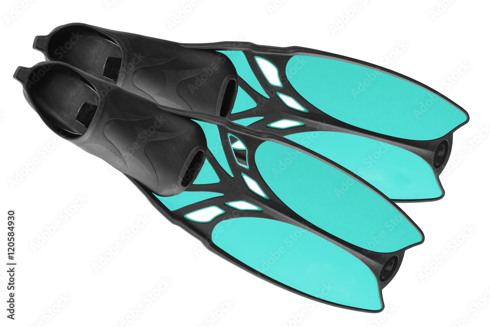Fototapeta The pair of blue fins