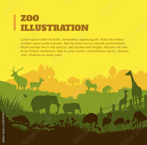 Zoo world illustration background, colored silhouettes elements, flat