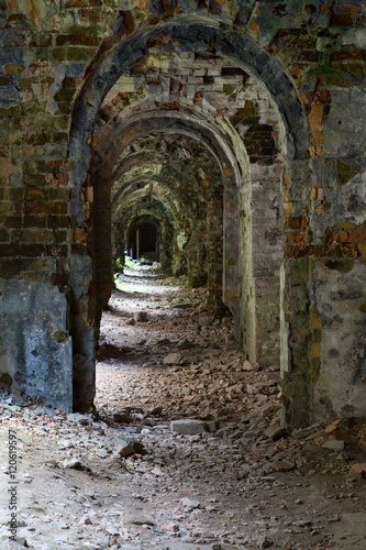 Poster Ruine Ruins inside fort Tarakanovskiy. Ukraine