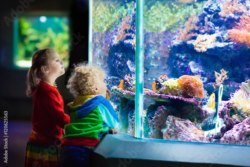Fotografie, Tablou Kids watching fish in tropical aquarium