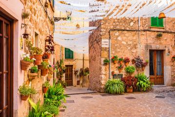 Fototapeta na wymiar Beautiful street with flowers in the old village Valldemossa Majorca Spain