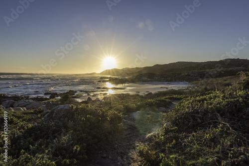Foto op Plexiglas Zuid Afrika Capo di buona speranza, Cape Point, Sudafrica