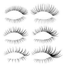 Set Of Eyelash Brushes. Eyelas...