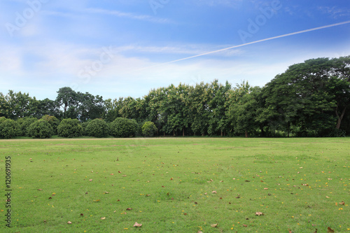 landscape of grass field and green environment public park use as natural backgr Fototapet