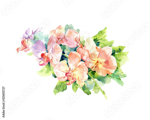 Staande foto Hoogte schaal watercolor painting of leaves and flower, on white background