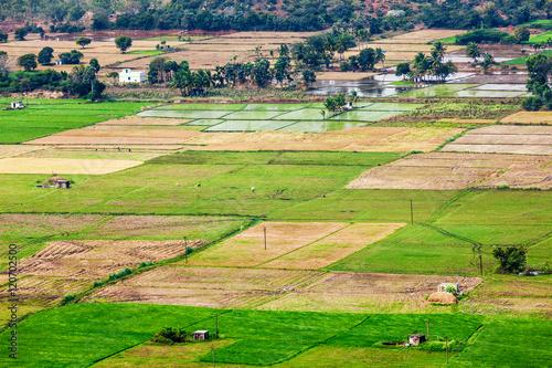 Foto auf Gartenposter Landschappen Aeiral view of Indian countryside with rice paddies, Tamil Nadu,