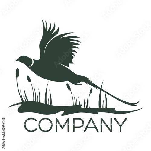 Obraz na plátně pheasant logo