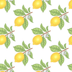 Panel Szklany Podświetlane Warzywa Illustration of lemons. Seamless vector pattern. Fruits on a white background.