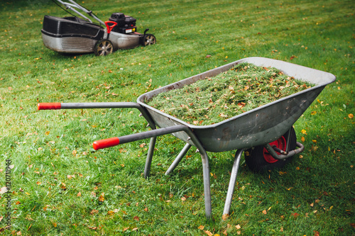 Fotografía  wheelbarrow with grass and lawnmower on green lawn