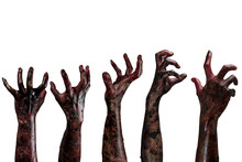 Blood  Zombie Hands,  Zombie T...