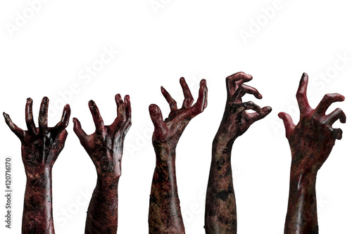 Blood  zombie hands,  zombie theme, halloween theme Fototapet
