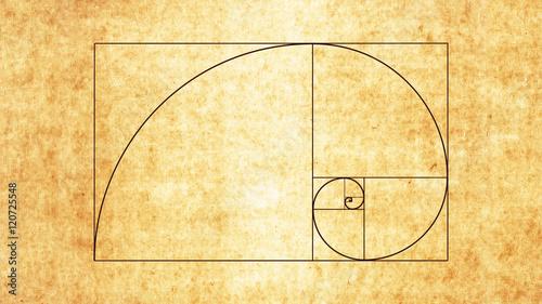 The Golden Spiral / Sacred Geometry Spiral Wallpaper Mural