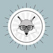 flat design hipster style fox image vector illustration