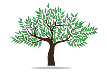Tree With Green Leafage. Vector.
