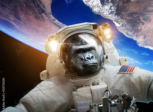 Türaufkleber UFO Astronaut Monkey gorilla in space. Elements of this image furnished by NASA.