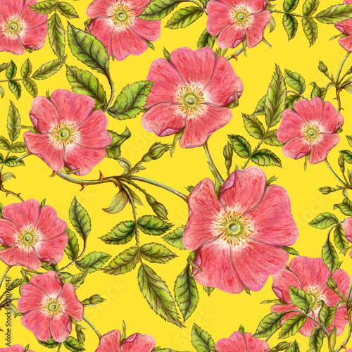 bezszwowy-wzor-wrzosow-kwiaty