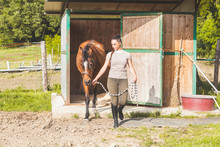 Woman Leading Tethered Horse From Stable