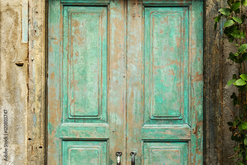 Poster Olive green wood door and a wall covered with green leaf