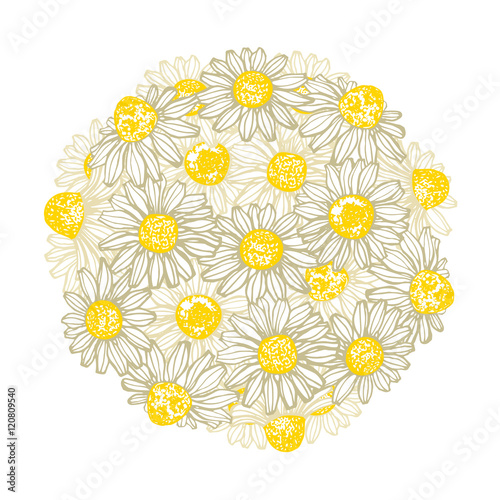 In de dag Madeliefjes vector hand drawn composition with chamomile