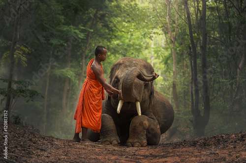 Photo  Monk with  elephants .