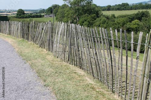 Fotografia, Obraz  Receding Fence in Irish Landscape