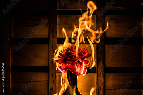 Fotografiet  Burning flower on a dark crate background