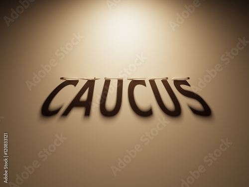 Valokuva 3D Rendering of a Shadow Text that reads Caucus
