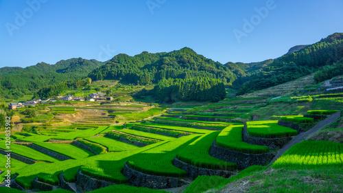 Fotobehang Rijstvelden famous terraced rice-fields in Hasami, Nagasaki, Japan.