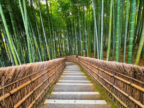 Papiers peints Bambou Path to bamboo forest, Arashiyama, Kyoto, Japan.