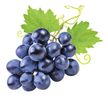 Grapes Isolated On The White Background