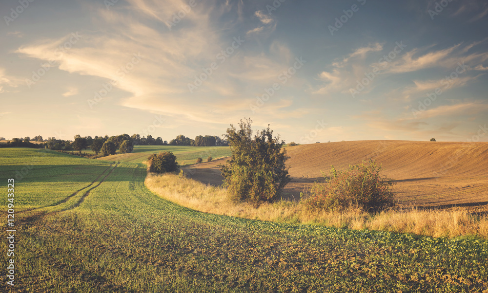 Fototapeta rural landscape, color retro, vintage