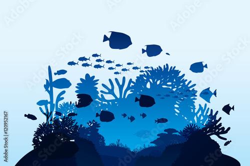 Fototapeta premium Ilustracja wektorowa życia morskiego i koralowców na tle dna morskiego.