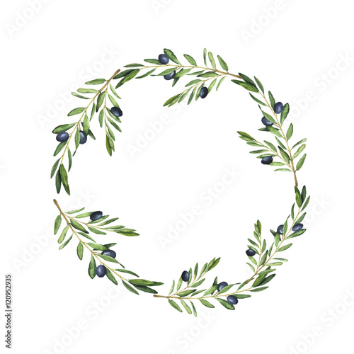 Fototapeta Olive tree wreath painted by watercolor. Design for menu, wedding invitation or greeting card. Hand drawn vector illustration. obraz