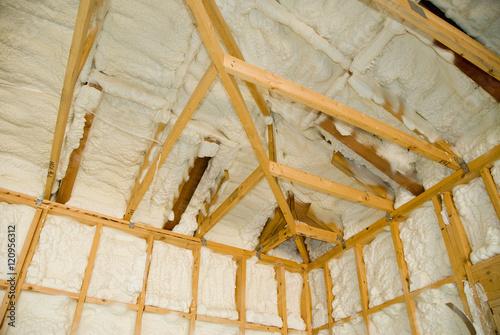 Fotografie, Obraz  Newly sprayed insulation