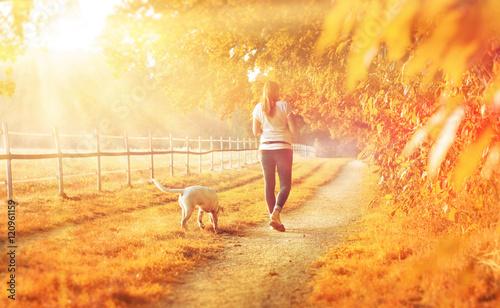 Cuadros en Lienzo Gelbe Herbstlandschaft - eine junge Frau geht mit ihrem Hund spazieren während d