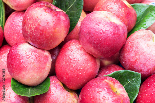 Foto op Canvas Madeliefjes closeup isolated juicy red apple