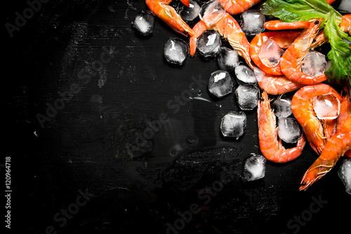 Fotografía  Shrimp with pieces of ice.