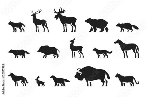 Animals icons set vector Canvas-taulu