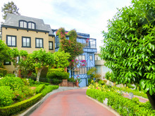 View Of Lombard Street In Cali...