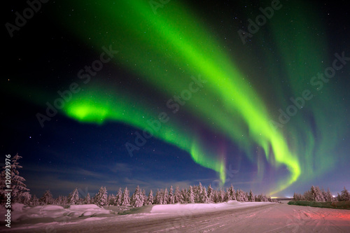 Photo sur Aluminium Aurore polaire Winter night landscape with forest, road and polar light over the trees.